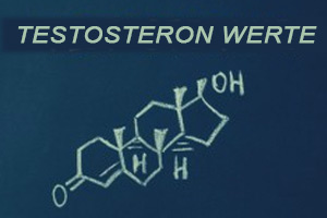 Testosteron Werte