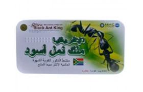 Africa black ant King